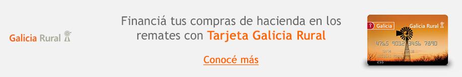 banco galicia banner